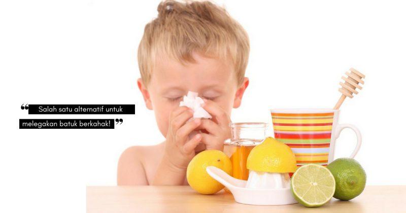 Praktik 5 Cara Mudah Tanpa Ubat Ini Untuk Hilangkan BATUK BERKAHAK Pada Anak!