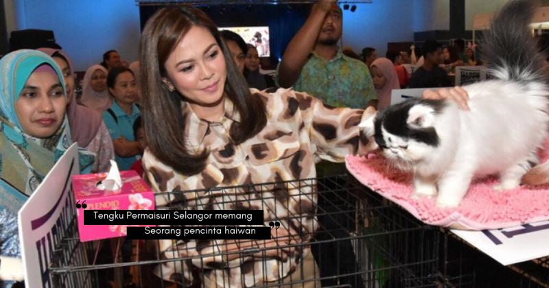 Kes Menzalimi Kucing Dalam Mesin Pengering Pakaian, TENGKU PERMAISURI NORASHIKIN Zahir Rasa Dukacita