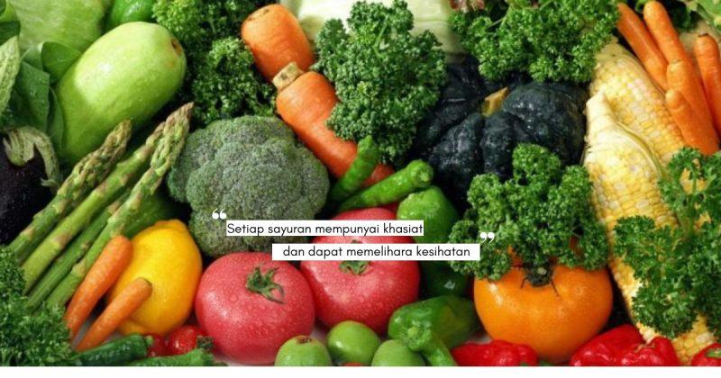 Avokado & Tomato Antara 10 Jenis SAYURAN Berstatus VIP, Memang Kaya Dengan Vitamin!